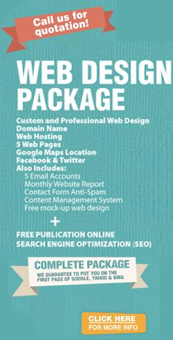website design packages for gauteng business